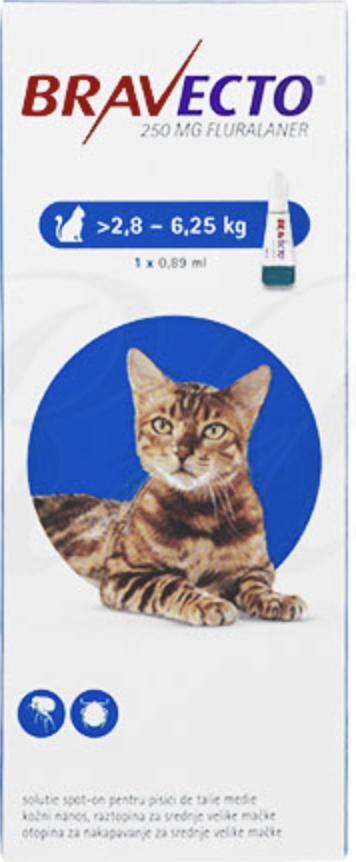 猫のブラベクトスポットオンとは?
