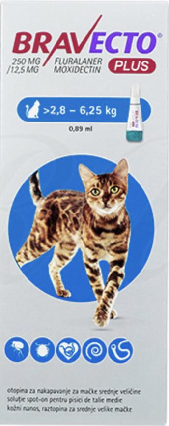 猫のブラベクトプラスとは?
