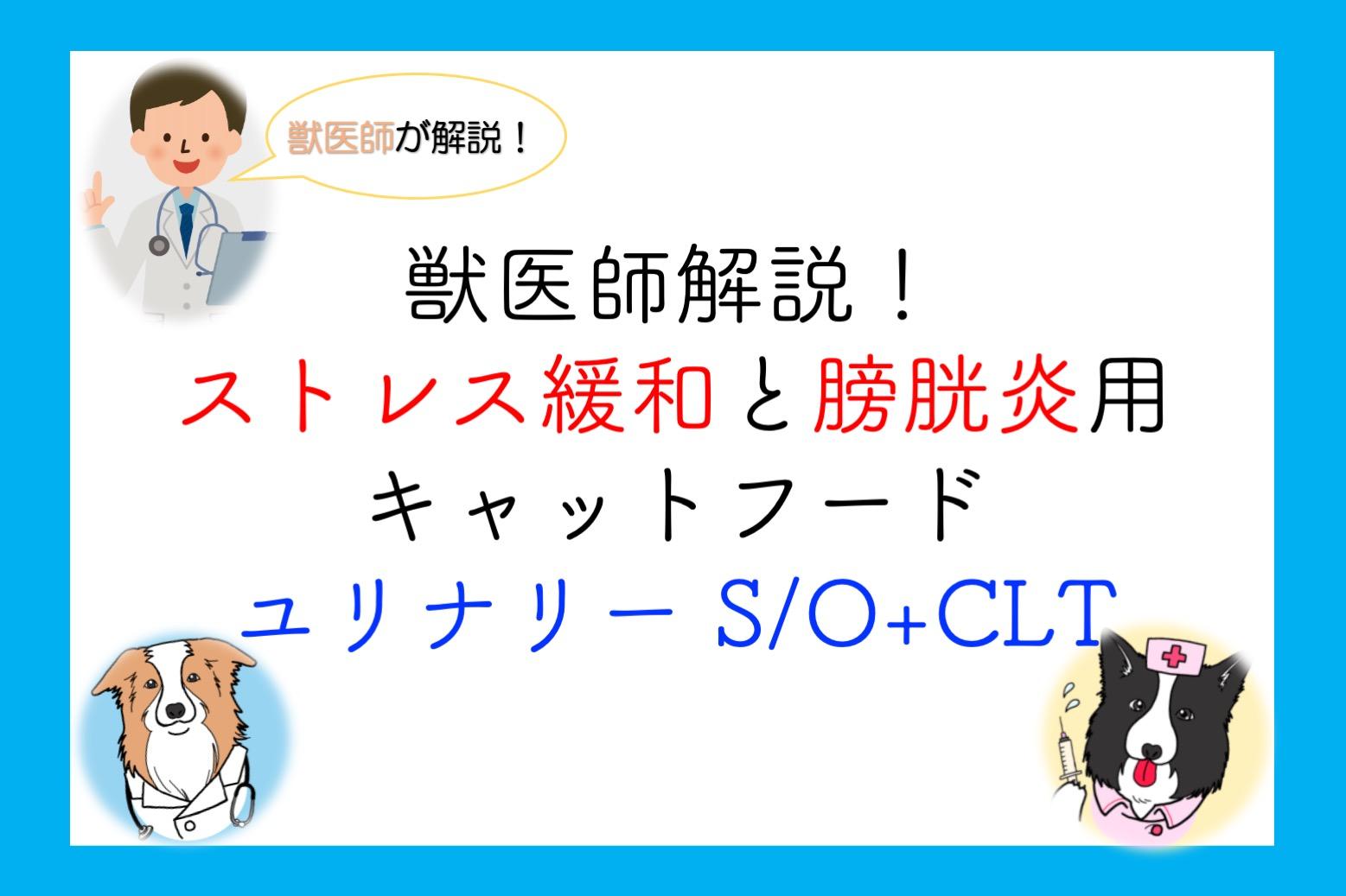 O s カナン ロイヤル clt ユリナリー 【猫】飼い方・しつけ(フード)